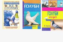 В Москве мужчина травит голубей крысиным ядом РЕН ТВ